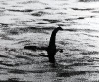 A (faked) photo of the Loch Ness monster (Archive/Getty)