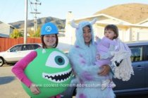 Homemade Monsters, Inc. Family Costume