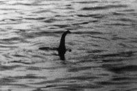 Scotland wants Loch Ness Monster as national animal because unicorns aren't real