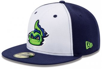 Vermont Lake Monsters gear