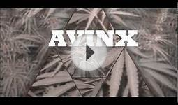 Avinx-Green monster(Official Music Video)